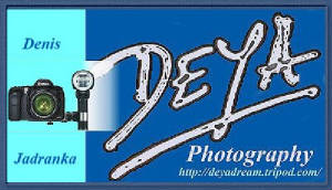 DEYA Photography