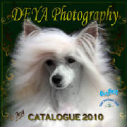 DEYA Photography -  CATALOGUE 2010