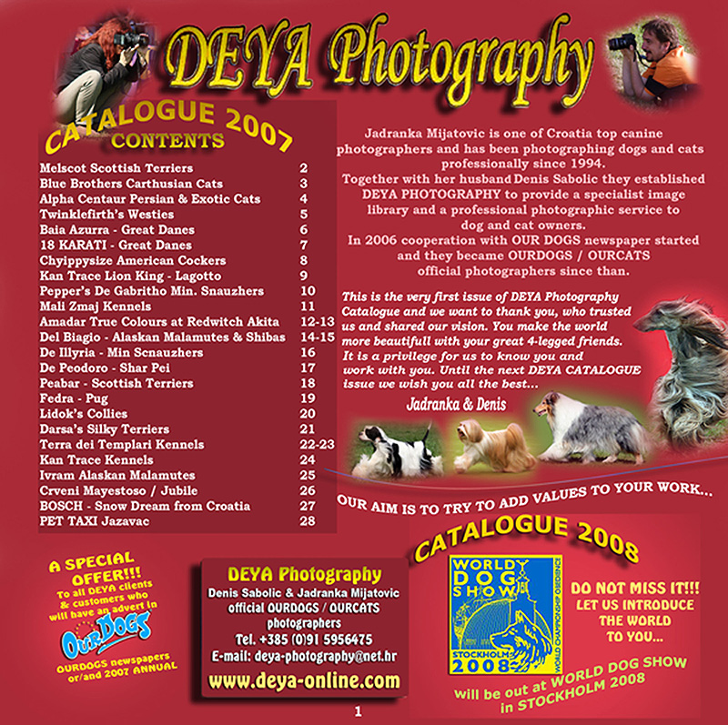 DEYA CATALOGUE 2007 - 1 Page- Introduction