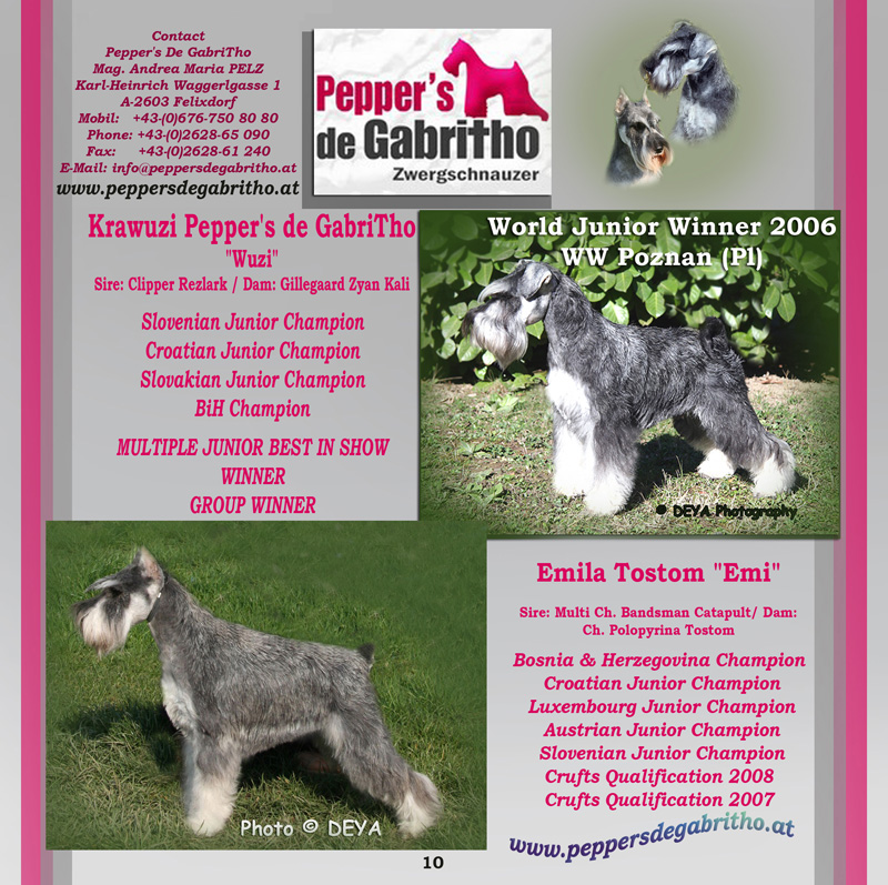 DEYA CATALOGUE 2007 - Pepper's de Gabritho