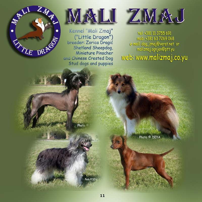 DEYA CATALOGUE 2007 - MALI ZMAJ KENNELS