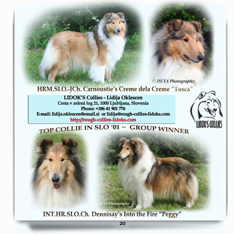 LIDOK'S Rough Collies