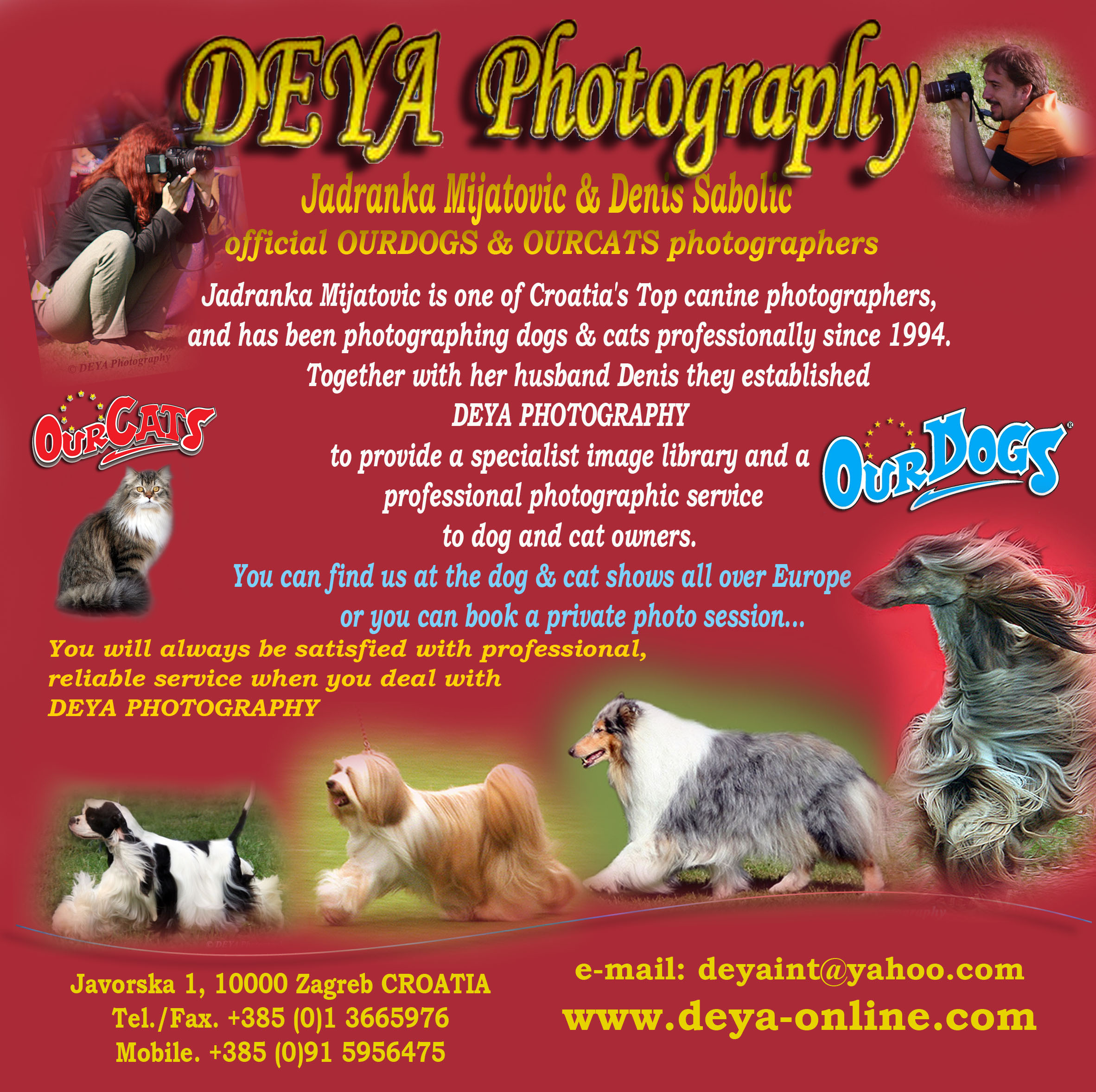 DEYA CATALOGUE 2007